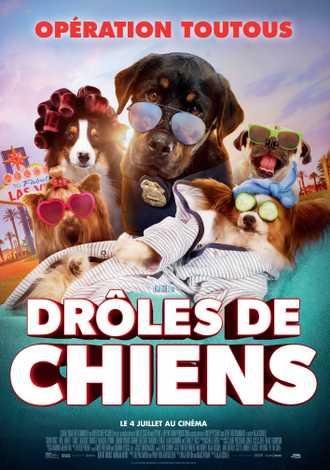 droles-de-chiens.20180704111301