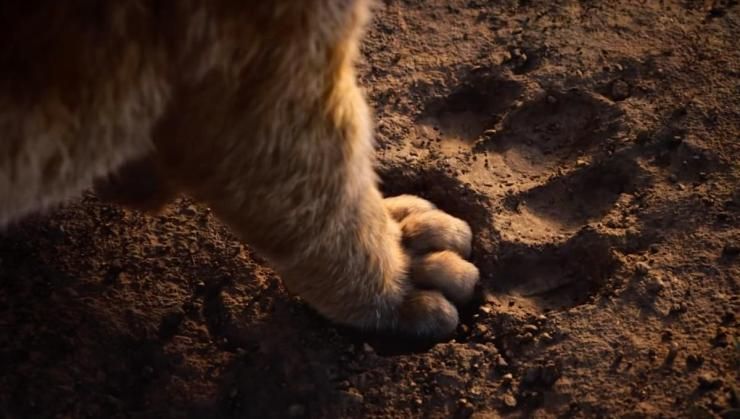 the_lion_king_remake_simba_paw_via_disney_youtube_2019